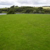 M9 Junction 3 dog walk and refreshments near Linlithgow, Scotland - Dog walks in Scotland