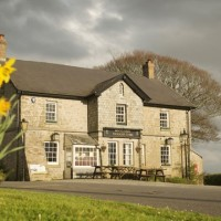 Dog-friendly inn near Saltash, Cornwall - Cornwall dog-friendly pubs.jpg