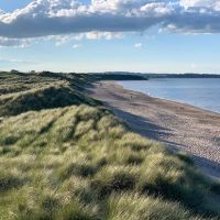 Historic dog-friendly village with pubs, walks, hotels and a massive dog-friendly beach, Northumberland - Dog-friendly beaches in Northumberland.jpg