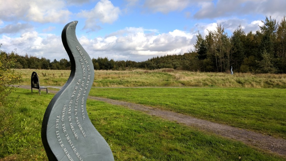 M62 J.7 Dog Walk at Sutton Manor Woodlands (The Dream Sculpture), Merseyside - IMG_20171005_153408.jpg