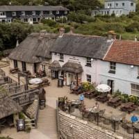 Coast path dog walk with pub, Dorset - Dorset dog-friendly pub and dog walk