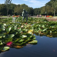 A584 dog walk and dog-friendly cafe in Lytham St Anne's, Lancashire - Lowther Gardens