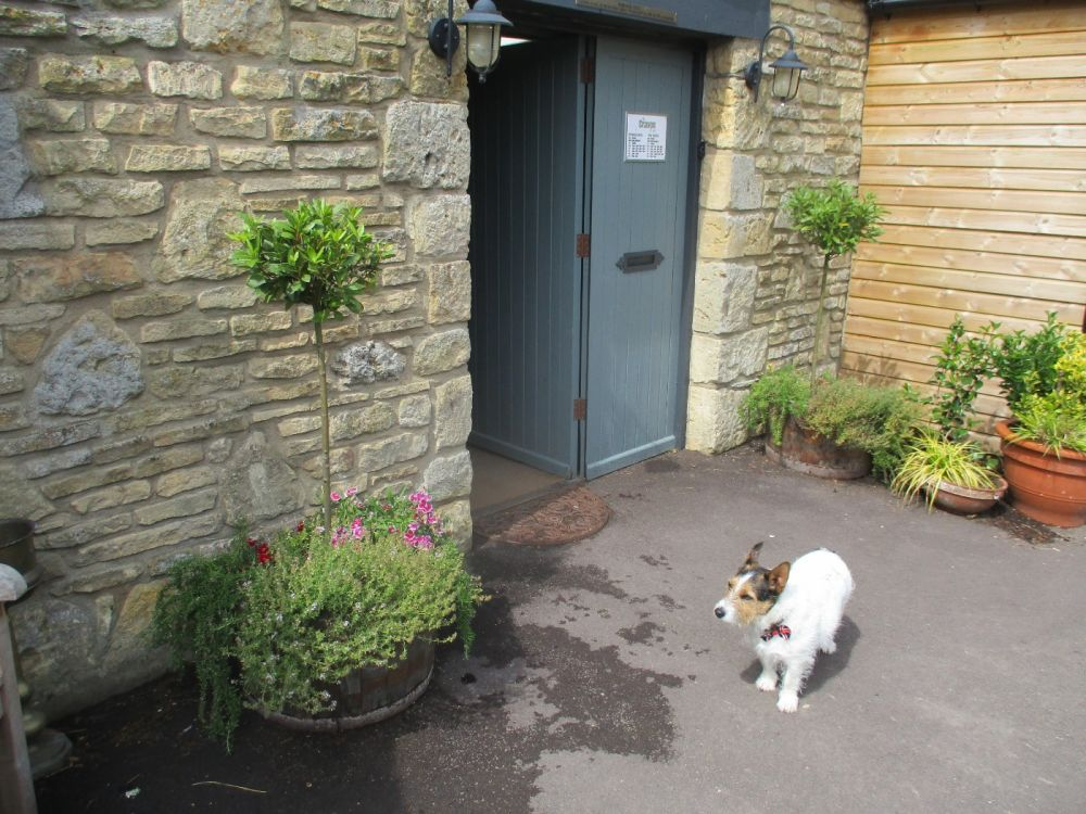 Dog-friendly pub and dog walk in the Cotswolds, Gloucestershire - Dog-friendly pub and walk in the Cotswolds.JPG