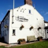 Antrobus dog-friendly pub, Cheshire West - dog-friendly-pubs-cheshire.jpg