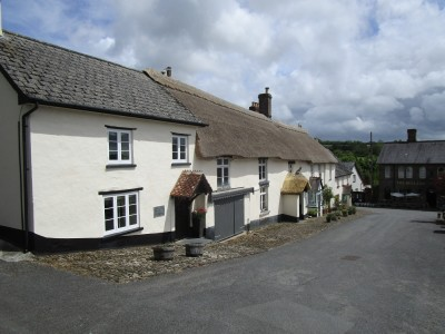 A377 coaching inn and dog walk, Devon - Driving with Dogs