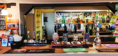 Dog walk and a dog-friendly village pub near the A11, Essex - Driving with Dogs