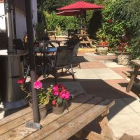 Country pub and dog walk near Saffron Walden, Essex - Essex dog-friendly pub and dog walk