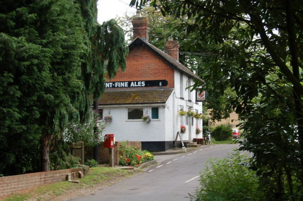 A3057 country pub and dog walk, Hampshire - Hampshire dog-friendly pub and dog walk