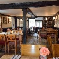 A29 dog-friendly pub and dog walks near Horsham, West Sussex - Sussex dog-friendly pubs.jpg