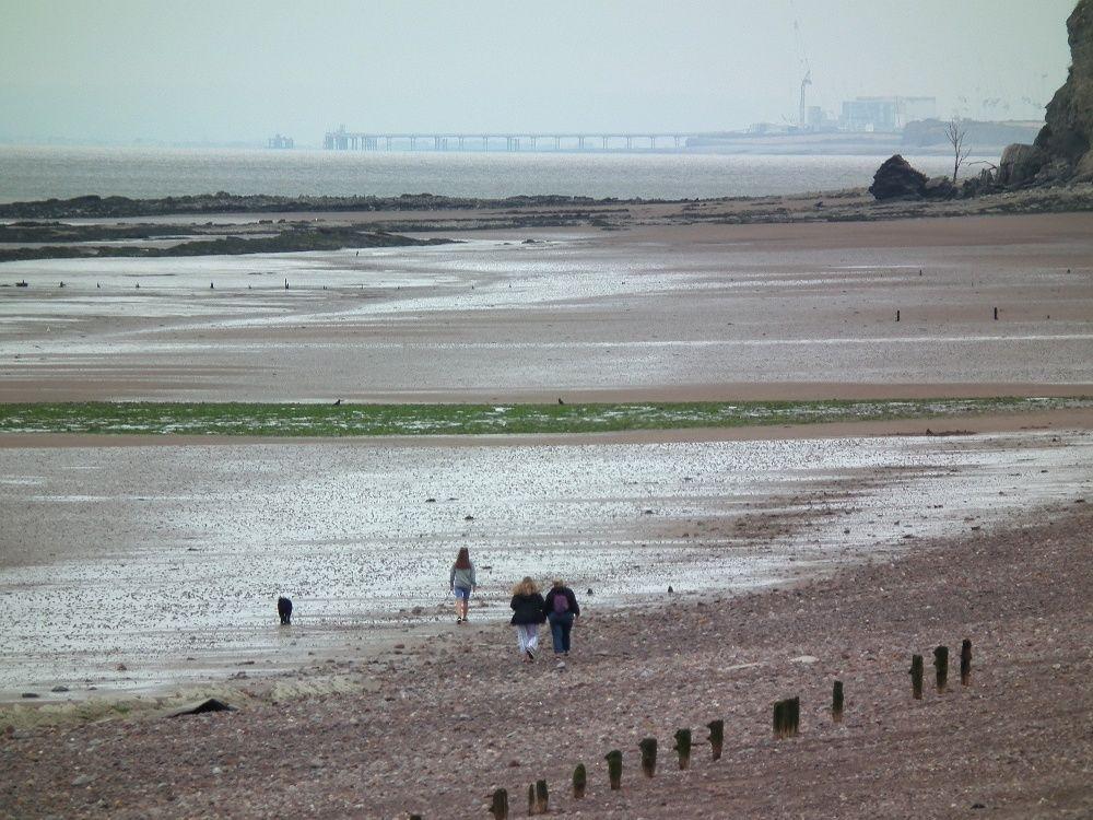 A39 Dog walk with a dog-friendly pub near Minehead, Somerset - Somerset dog-friendly beach near the A39.jpg