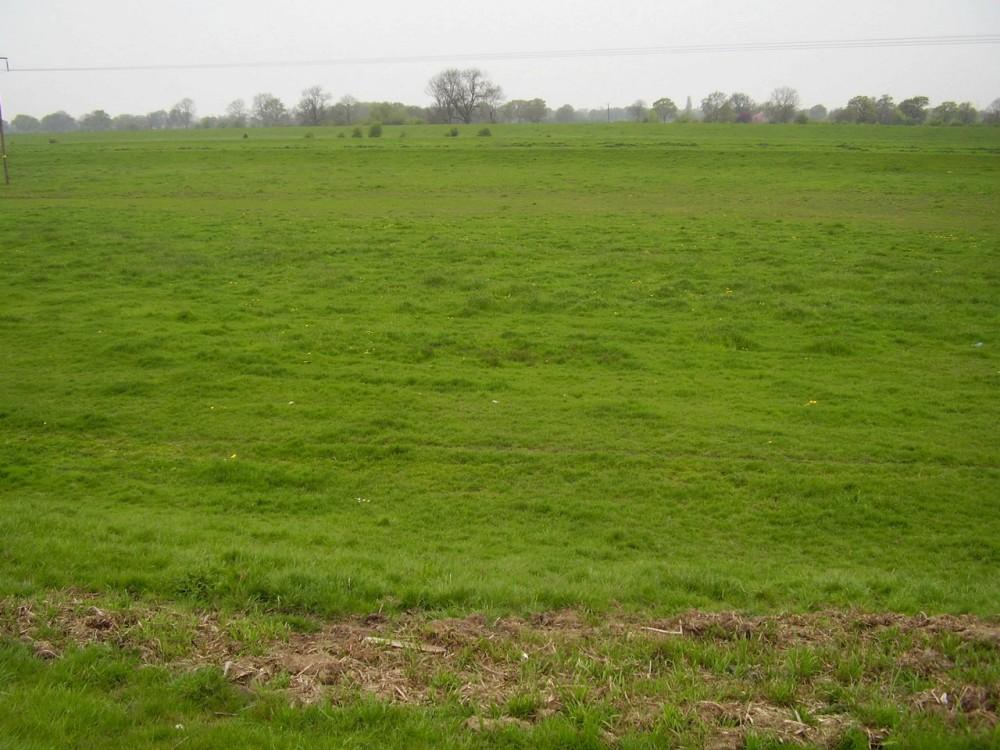 M18 Junction 6 Waterside dog walk, Yorkshire - Dog walks in Yorkshire