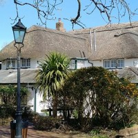 M27 Junction 1 doggiestop with pub and walk, Hampshire - Hampshire dog-friendly pub and dog walk