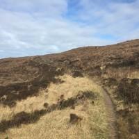 Applecross to Sand Bay dog walk, Scotland - IMG_0366.JPG