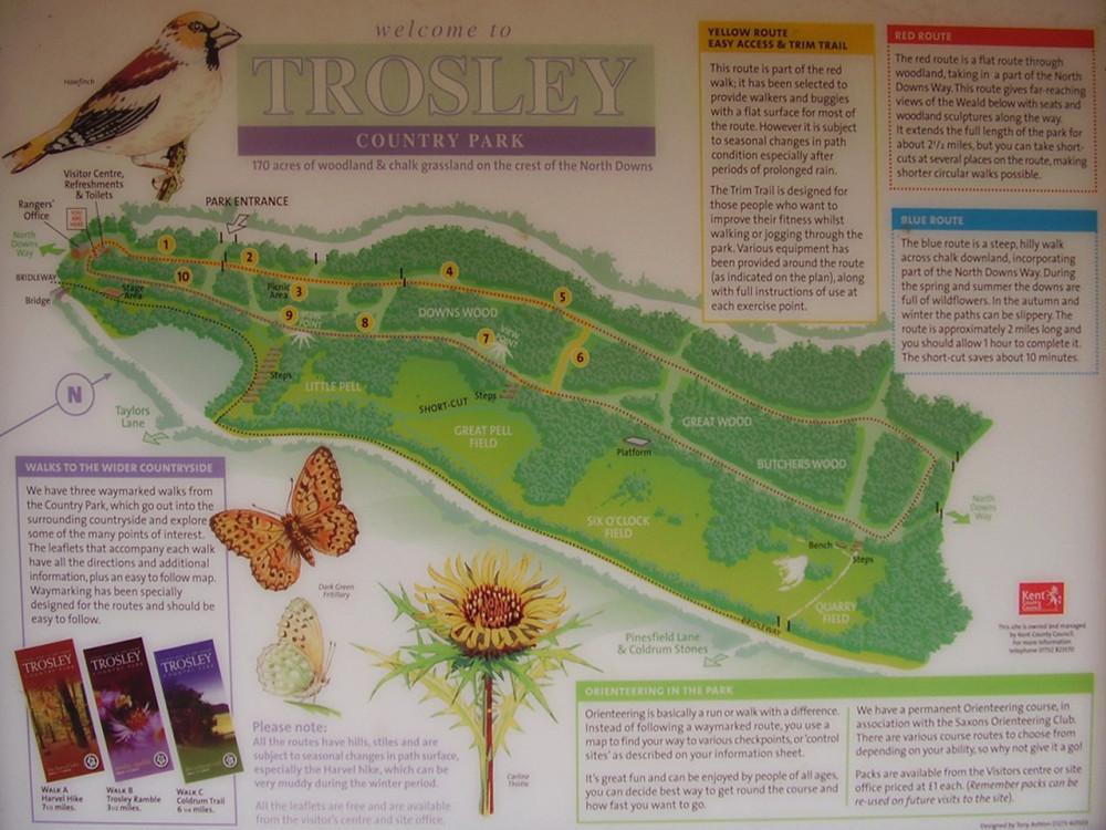 Trosley country park dog walk, Kent - Dog walks in Kent