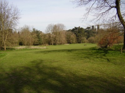M20 Junction 4 dog walk and country park, Kent - Driving with Dogs