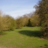 Maidstone dog walking park, Kent - Dog walks in Kent