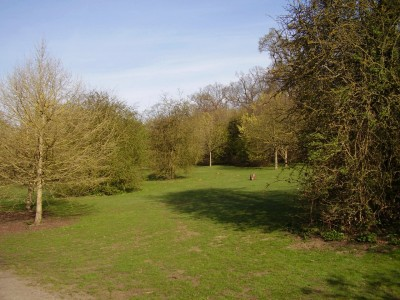 Maidstone dog walking park, Kent - Driving with Dogs