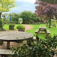 A30 dog-friendly country pub near Chard, Somerset - Somerset dog friendly pub and dog walk
