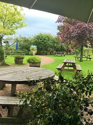 A30 dog-friendly country pub near Chard, Somerset - Driving with Dogs