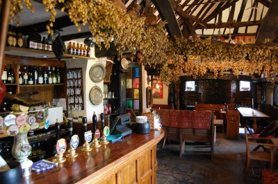 M40 Junction 3 dog walk and amazing dog-friendly inn, Buckinghamshire - Driving with Dogs
