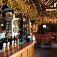 M40 Junction 3 dog walk and amazing dog-friendly inn, Buckinghamshire - Buckinghamshire dog friendly pub and dog walk