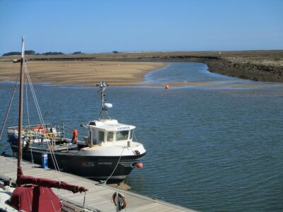 A149 Wells next the Sea dog-friendly B&B, pubs and dog walk, Norfolk - Driving with Dogs