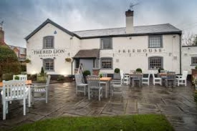 Dog walk and dog-friendly inn near Chester, Cheshire - Driving with Dogs