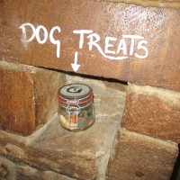A37 dog-friendly inn and dog walk between Yeovil and Dorchester, Dorset - IMG_0201.JPG