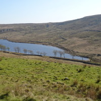 Remote moorland dog walk, Yorkshire - widdop.jpg
