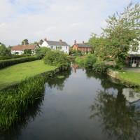 Eardisland dog walks, Herefordshire - Dog walks in Herefordshire
