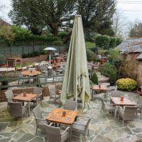 A283 dog-friendly pub and dog walk near Godalming, Surrey - Surrey dog-friendly pub and dog walk