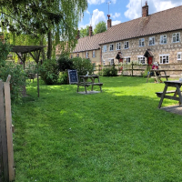 Circular dog walk and dog-friendly pub near Salisbury, Wiltshire - Wiltshire dog friendly pub and dog walk
