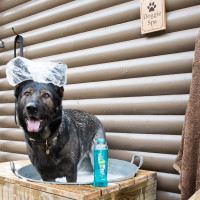 Quantock Cottages - dog-friendly, Somerset - hot-tub-coleridge-luxury-dog-friendly-cottage-pp-(2).jpg