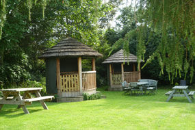 Dog-friendly country pub and dog walk by the river, Essex - Driving with Dogs