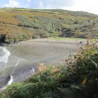 Ceibwr dog-friendly beach, Wales - IMG_5842.JPG
