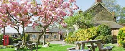 A275 dog-friendly country pub with dog walk, East Sussex - Driving with Dogs