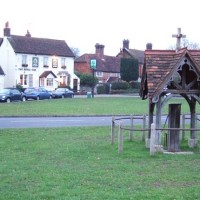 A25 dog walk and dog-friendly pub near Dorking, Surrey - dog-friendly royal oak surrey.jpg