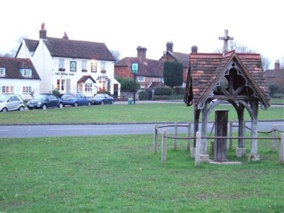A25 dog walk and dog-friendly pub near Dorking, Surrey - Driving with Dogs