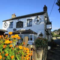 Riverside dog walk, near Richmond, Yorkshire - Yorkshire Dales dog walk and dog-friendly pub