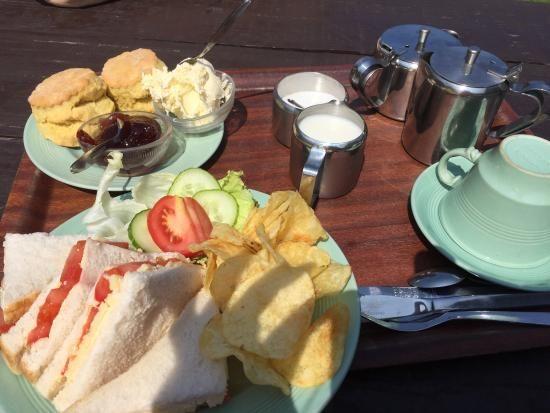 A39 Woodland dog walk and scrumptious cream tea, Somerset - Exmoor dog-friendly cafe.jpg