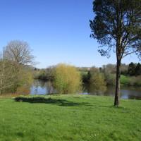 A443 Dog-friendly Tea Rooms and dog walk, Worcestershire - Dog walks in Worcestershire