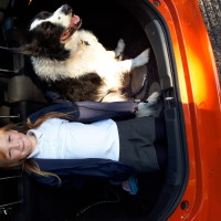 Jaqs 153 - Driving with Dogs