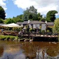 A381 dog-friendly riverside pub with B&B near Totnes, Devon - Dog-friendly B&B and pub.jpg