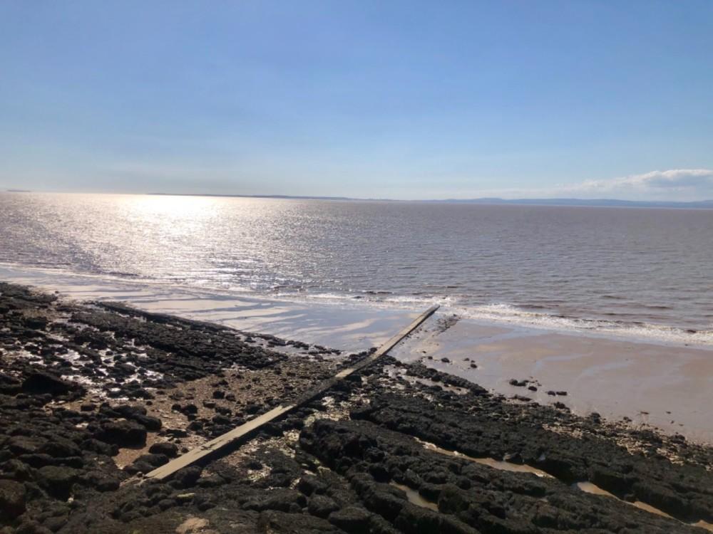 Little rocky bay - dog-friendly beach, North Somerset - D4EA669D-D8F4-4C72-A772-462BA72B9819.jpeg