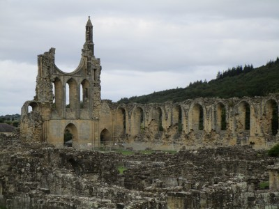 Byland Abbey dog walk, Yorkshire - Driving with Dogs