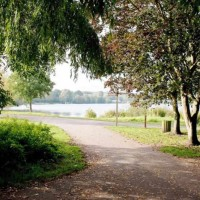 Lovely dog walk with trees, a river and 2 lakes, Hertfordshire - Bury Lake-pic 2.jpg