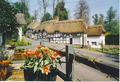 A303 dog-friendly inn, B&B and dog walk, Hampshire - Driving with Dogs