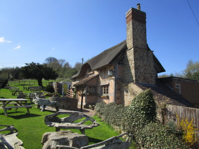 A44 dog-friendly pub and dog walk, Herefordshire - Driving with Dogs