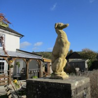 Country dog walk and pub near Dorchester, Dorset - IMG_0210.JPG