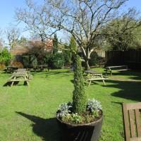 A3 Grayshott dog-friendly pub, Surrey - Surrey dog walks and dog-friendly pubs.JPG